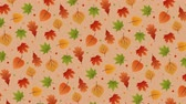 jesienne liŚcie : Rotating background with colorful leaves