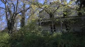 creepy : Abandoned House in the Woods Stock Footage