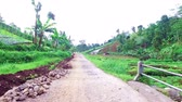 Countryside from Java Indonesia Stock Footage