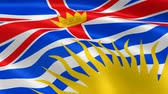 columbian : British Columbian flag in the wind. Part of a series.