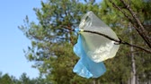 empty plastic bags caught on a branch in the forest
