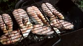 kitchen : skewers of grilled trout on a black backgroud Stock Footage