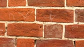 estuque : The video shows Red brick wall background