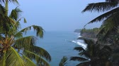 Varkala Black beach, South of India, Kerala Wideo