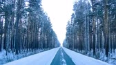 pokrytý : Way road through winter forest. Timelapse footage