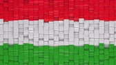 течь : Hungarian flag made of cubes moving up and down in a random pattern. 3D animated motion background loop.