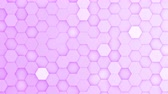 favo de mel : Purple hexagons moving up and down in a random pattern. 3D animated motion background loop. Top down isometric view. Stock Footage