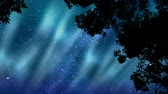 явление : Polar lights animation in a star-filled sky with composited trees, blowing in the wind