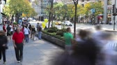 shopping : CHICAGO - Time lapse, crowds of people walk along Michigan Avenue in Chicago Stock Footage
