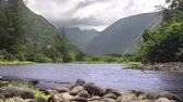 perfeição : Beautiful Hawaiian valley with a river running through Stock Footage