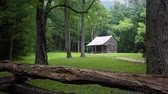 A family walking up a trail to visit a scenic historic cabin at Cades Cove in the Smokey Mountains