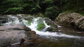 pretty : River water falling over mossy rocks in the Smokey Mountains