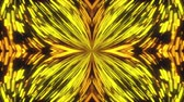 glanz : Computer generated abstract background of flickering particles, 3D rendering of a kaleidoscope of colored stripes, image of a flower or butterfly Videos