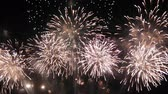 şenlik : Fireworks display celebration, Colorful New Year Firework 4K