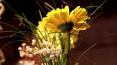 wazon : Yellow daisies in a vase and adding new flowers to make the arrangement even more beautiful and attractive.