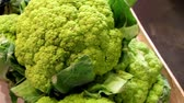 single broccoli : Green broccoli on your veggies makes your dinner very nutritious and delicious especially on chop suey.