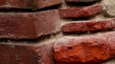 estuque : Brick wall. An image of the brick wall being shown.  Vídeos