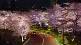 avril : [4K recording, no sound] Japanese Spring Tokyo City Scapes [Night Cherry Blossoms in Tokyo Midtown] [Zoomin] Vidéos Libres De Droits