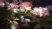 teljes virágzás : [4K recording, no sound] Japanese spring Tokyo city scapes Roppongi Hills night cherry blossoms [zoomin]