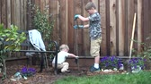 plântula : Two boys planting a tree in backyard