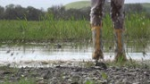lamacento : Child in rain boots jumping happily in puddle Stock Footage