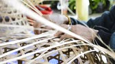entwine : elderly female hands manually weaving bamboo basket. Stock Footage