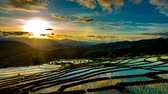 Time lapse, Sunset over the rice fields reflected in the water at Pa Bong Piang village Chiang mai, thailand. Stok Video