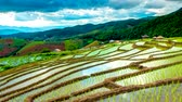 Time lapse, Clouds moving over the rice fields reflected in the water at Pa Bong Piang village Chiang mai, thailand. Camera pan, video 4k