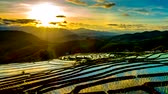 Time lapse, Sunset over the rice fields reflected in the water at Pa Bong Piang village Chiang mai, thailand. Camera zoom out, video 4k