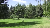 pampeliška : The Botanical Garden at the Vitebsk