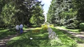 The Botanical Garden at the Vitebsk