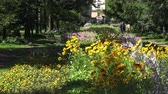 маргаритка : The Botanical Garden at the Vitebsk