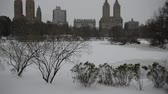 yatırım : Vertical Panning HD Video of Central Park and Manhattan skyline, New York City Stok Video