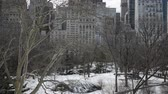 yatırım : Panning HD Video of Trees in winter, Central Park with snow and Manhattan skyline, New York City