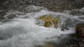 meditation : Clear, clean water flowing in river