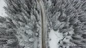winter : Aerial winter landscape of high pine trees and a snowy road. Stock Footage