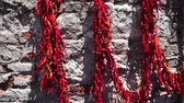 cayenne : Red Dry Pepper on Wall Stock Footage