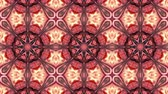floral ornament : Abstract Paint Brush Ink Explode Spread Smooth Concept Symmetric Pattern Ornamental Decorative Kaleidoscope Movement Geometric Circle and Star Shapes