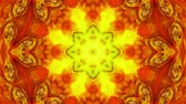 decorative symbol : Abstract Paint Brush Ink Explode Spread Smooth Concept Symmetric Pattern Ornamental Decorative Kaleidoscope Movement Geometric Circle and Star Shapes