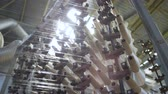 millsime : panorama of operating spinning shop with lots of turning white thread bobbins at bright light