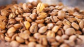 moka : macro fresh aromatic coffee grains lay in pile and gold roasted beans fall down to tasty heap