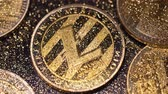görev : macro marvelous striped litecoin real model lays among gold sparkles and coins at light ray Stok Video