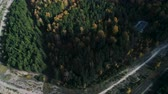 к северу : aerial motion from highway to evergreen and gold woods