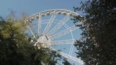 miasto : Ferris Wheel In Park