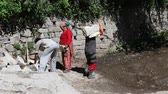 heavy : MANALI, INDIA - SEPTEMBER 16, 2014: Unidentified Indian men and women carry heavy stones. In India, cheap labor and low-paid manual work Stock Footage