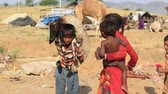 desert sheep : PUSHKAR, INDIA - OCTOBER 23, 2014: Unidentified children with sheep involved in Pushkar Camel Mela (Pushkar Camel Fair) . This fair is the largest camel trading fair in the world.