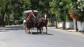 cartn corrugado : BUYUKADA, TURKEY - JULY 23, 2015: Phaeton in Prince Island Buyukada. Buyukada is the biggest island in Istanbul.