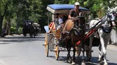 cartn corrugado : BUYUKADA, TURKEY - JULY 23, 2015: Phaeton in Prince Island Buyukada. Buyukada is the biggest island in Istanbul