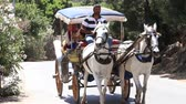 style : BUYUKADA, TURKEY - JULY 23, 2015: Phaeton in Prince Island Buyukada. Buyukada is the biggest island in Istanbul
