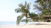 summer : Tropical sand beach with exotic coconut palm trees near sea water